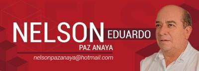 Nelson E Paz A
