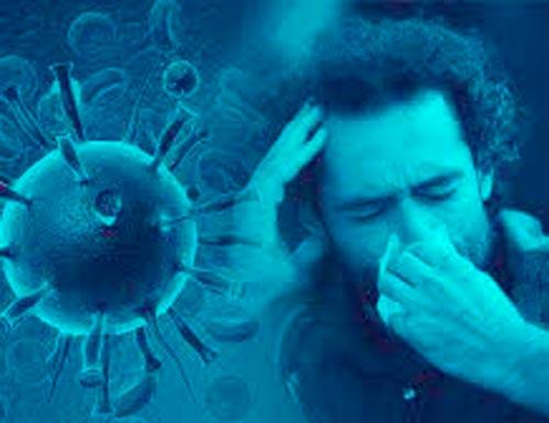 Muertos por coronavirus subieron a 35.677
