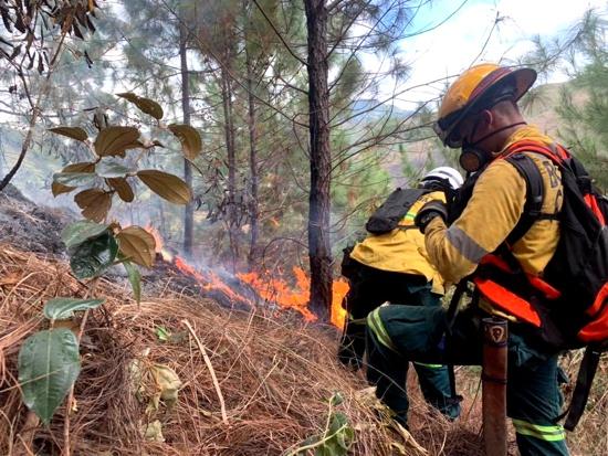 Ser bombero no es tarea fácil en Santander de Quilichao