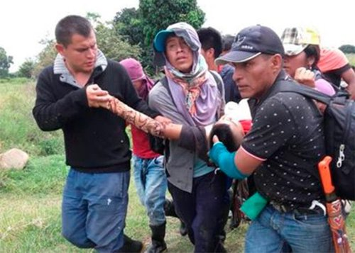 En medio de combates mataron a una niña y a una presunta disidente