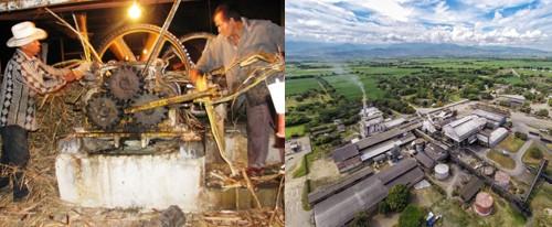 Ingenios y trapiches en el Cauca