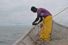 Unicauca y Universidad Nacional lideran proyecto sobre pesca artesanal