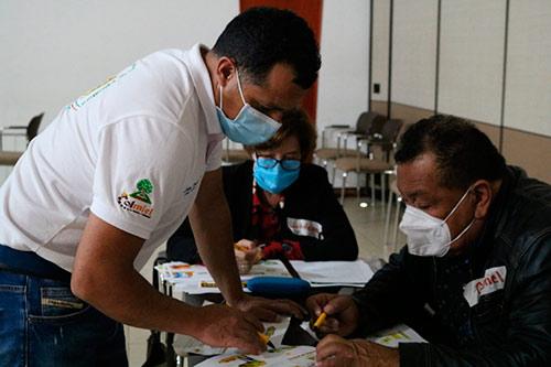 Aumenta producción de aguacate hass de Popayán