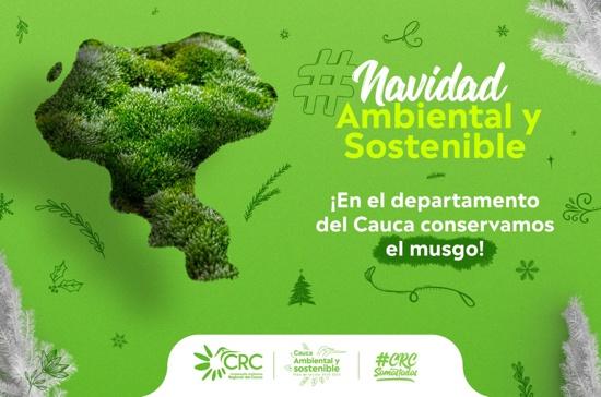 CRC invita a conmemorar una navidad ambiental y sostenible - Protejamos el musgo
