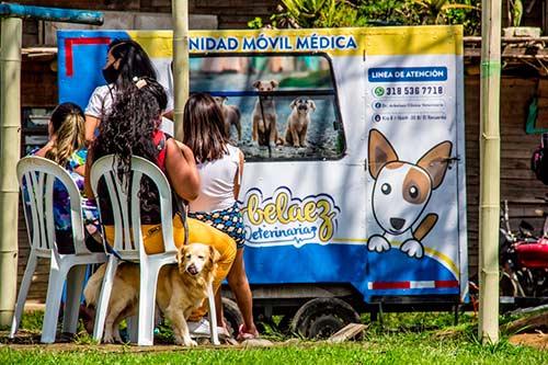 2000 mascotas serán esterilizadas en Popayán