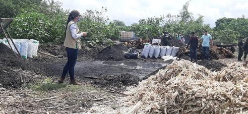 CRC decomisó carbón vegetal en el municipio de Padilla