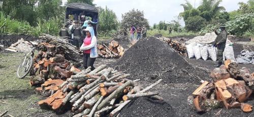 CRC y Policía decomisaron carbón vegetal en el municipio de Padilla