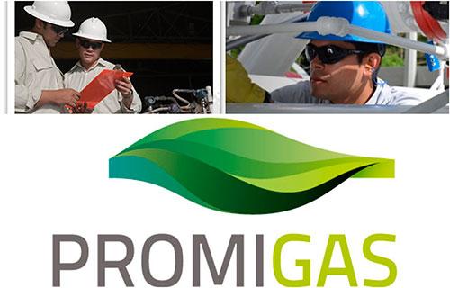 Promigas presentó informe de gestión 2020