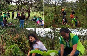 Emcaservicios apoya reforestación de cuenca en el municipio de Bolívar