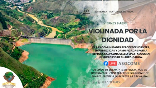 Violinada por la Dignidad: La Salvajina es una salvajada.