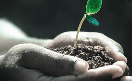 Es tiempo de sembrar lo mejor