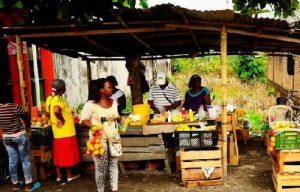 La inseguridad alimentaria actual requiere de una metamorfosis agropecuaria
