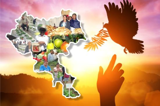Por ahora construir paz territorial en el Cauca