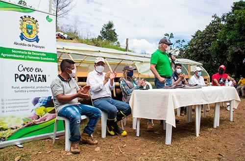 Alcaldía de Popayán apoya la caficultura familiar para la reactivación económica