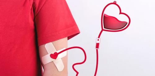 Más de 800 mil personas donaron sangre