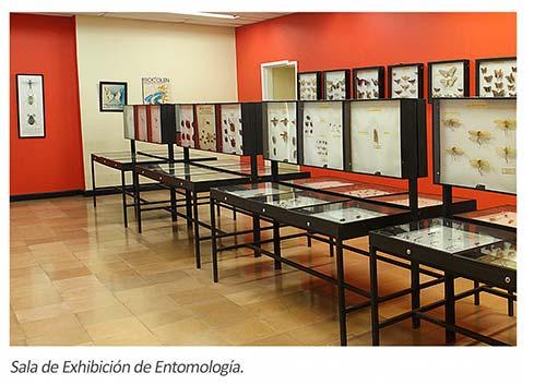 Exposición del Museo de Historia Natural en Santander de Quilichao