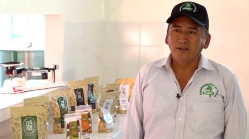 Jorge Cueltan productor de pimienta